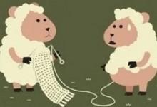 冷门见识:薅羊毛的各类常见问题及解答