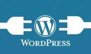 冷门资源:WordPress新手建站+设置教程(共2套)
